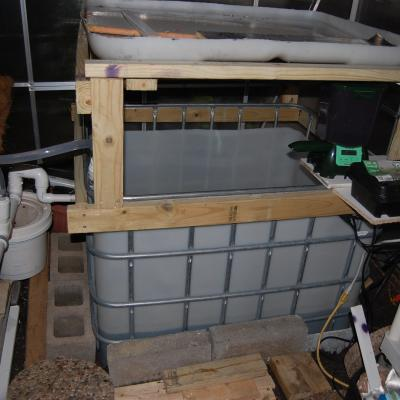 View of Aquaponics fish tank, floating raft and piping